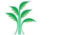Hængende haver hos INCUBA