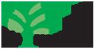 Ny undersøgelse: Plantevægge forbedrer indeklimaet markant