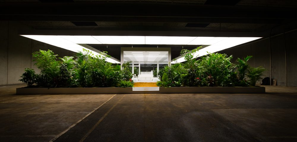 Plante projekter