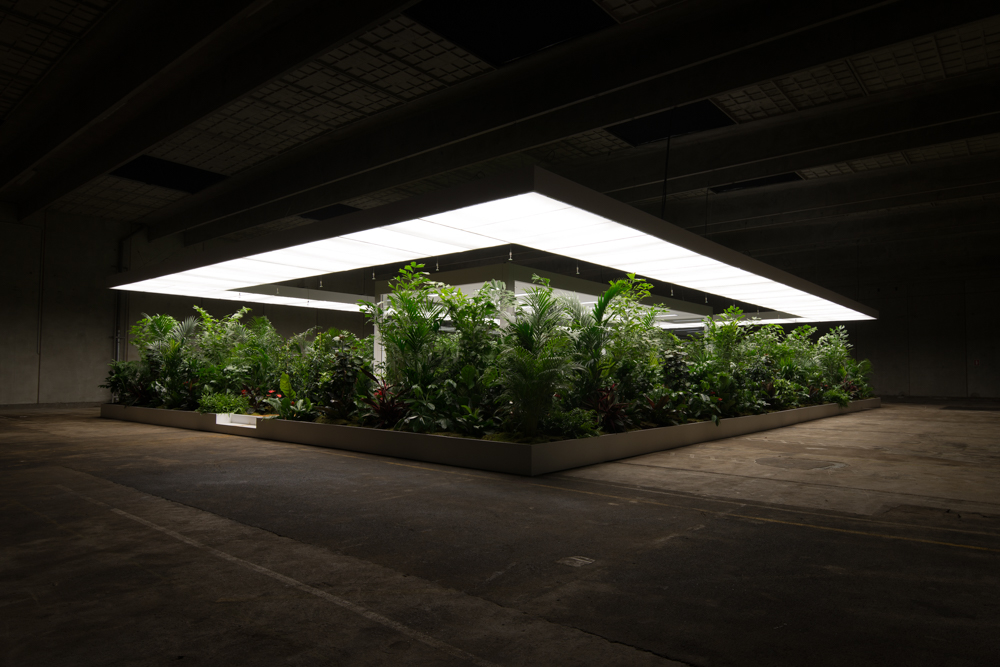 Doug Aitken - The Garden