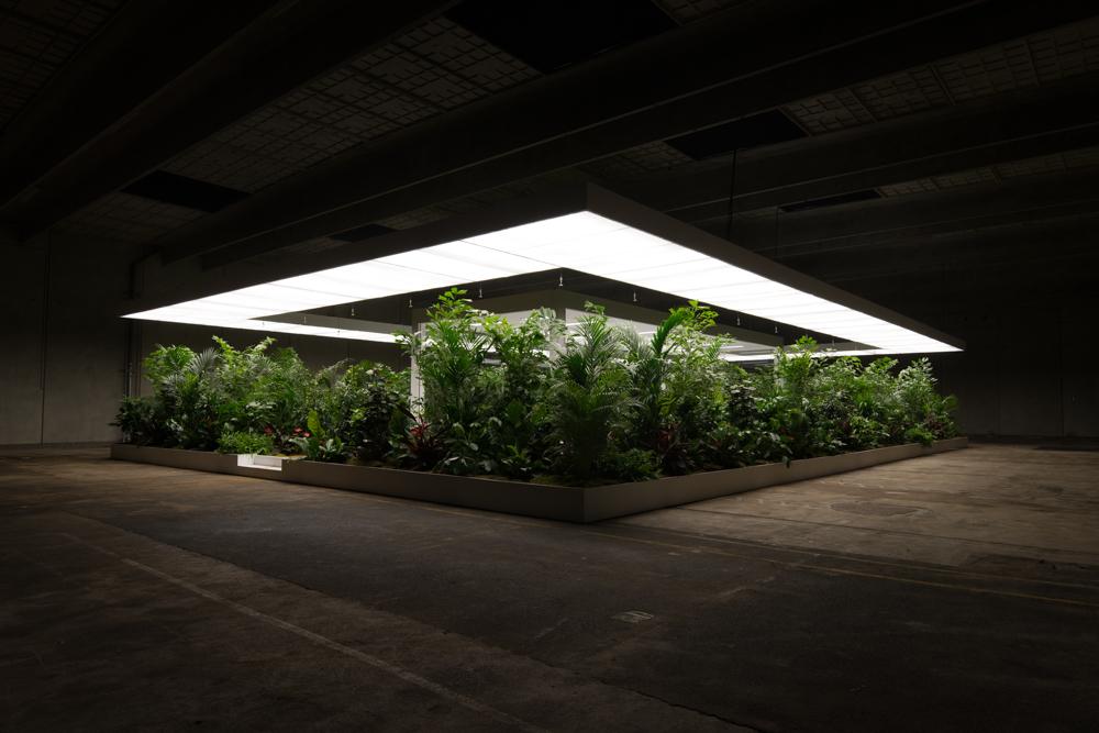 Doug Aitken - The Garden