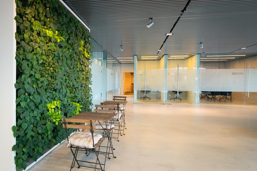 plantevæg, kontor