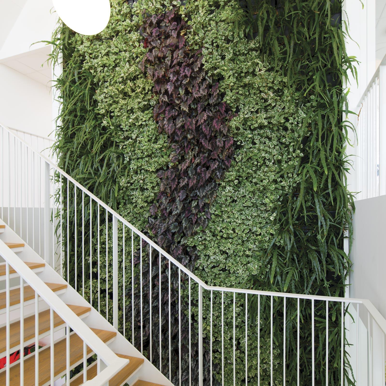 Plantevæg med mønster,