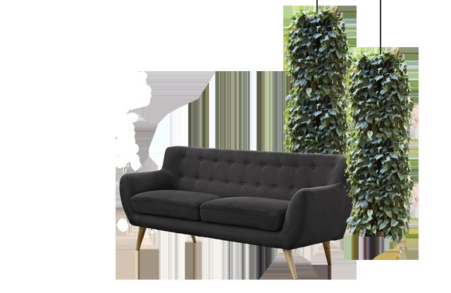 plantesøjler, Grønne søjler indendørs