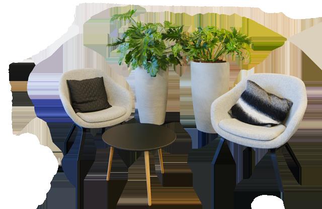 indretning med planter, pris planteservice