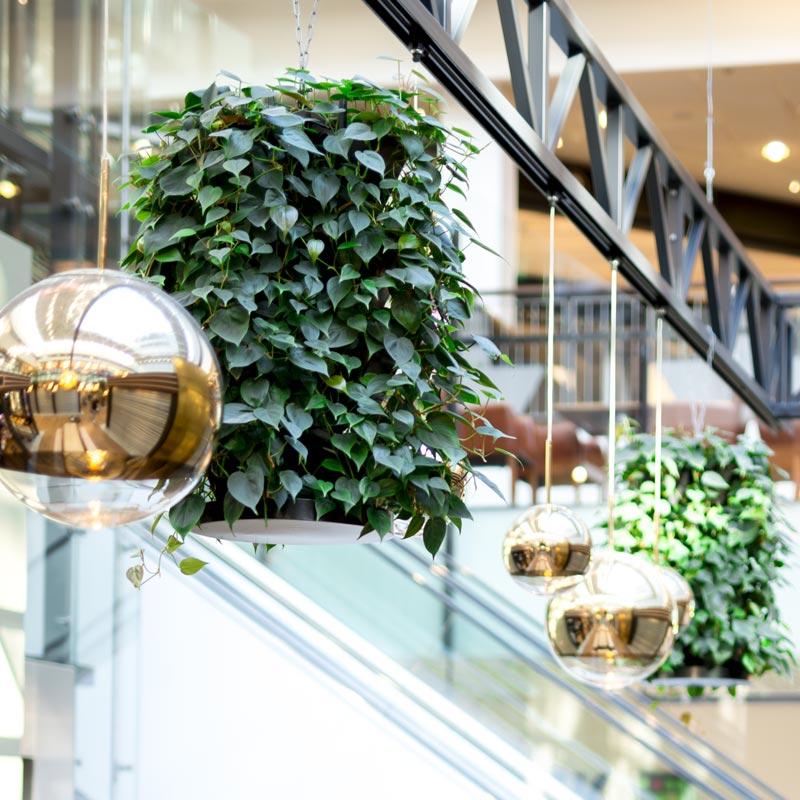 Luftfugtighed: Vandvæg gav Skanderborg Kommune bedre indeklima