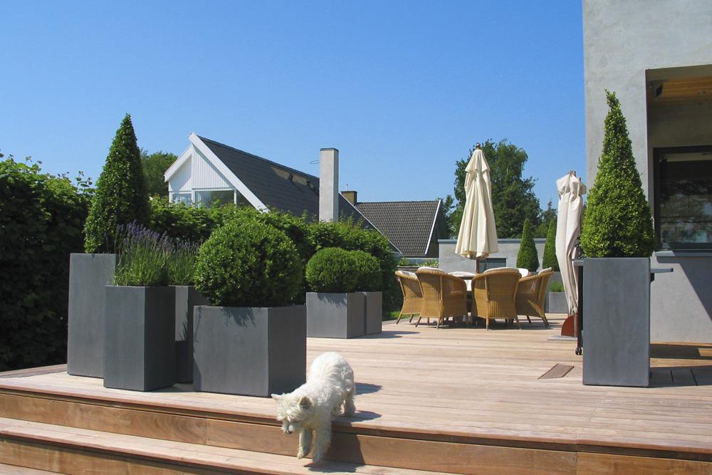 Grå krukker med buksbom på terrasse