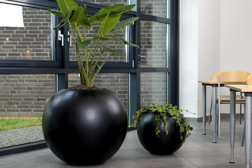 Runde sorte krukker, planteservice