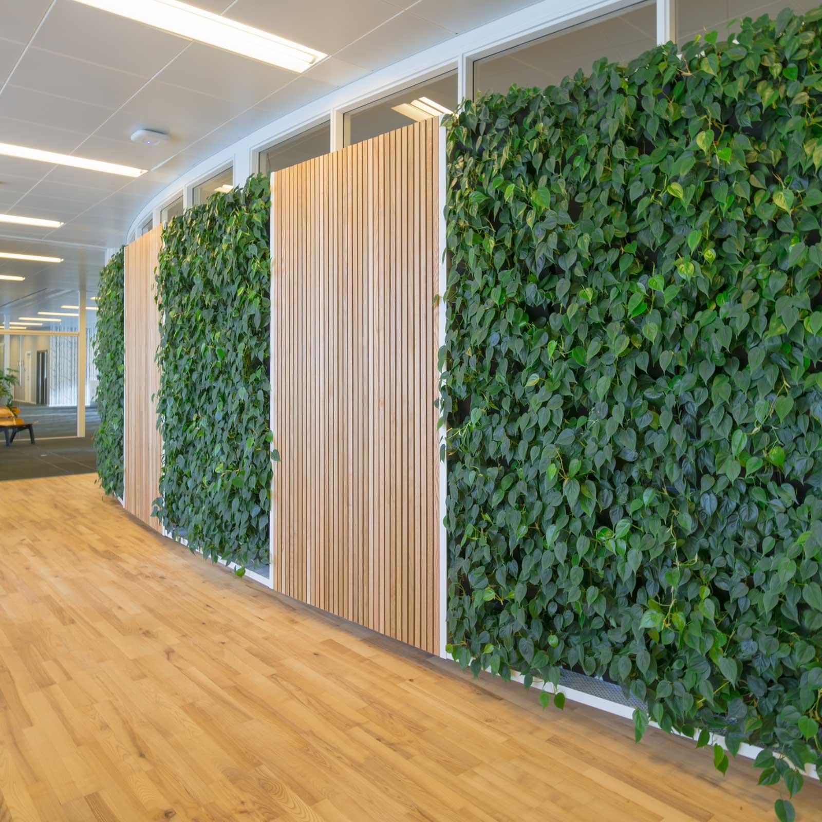 indbyggede plantevægge, plantevæg, plantevæg pris
