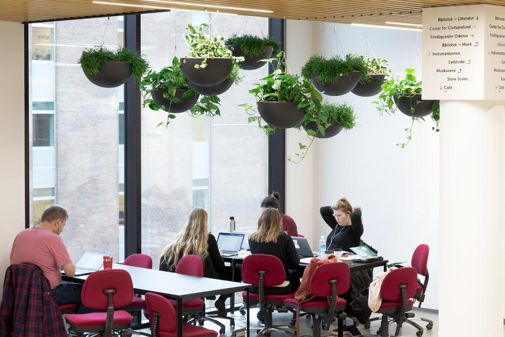 Hængende haver indendørs,