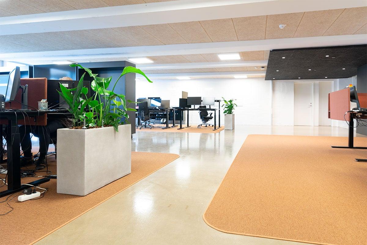 aflange plantekasser, kontor miljø,