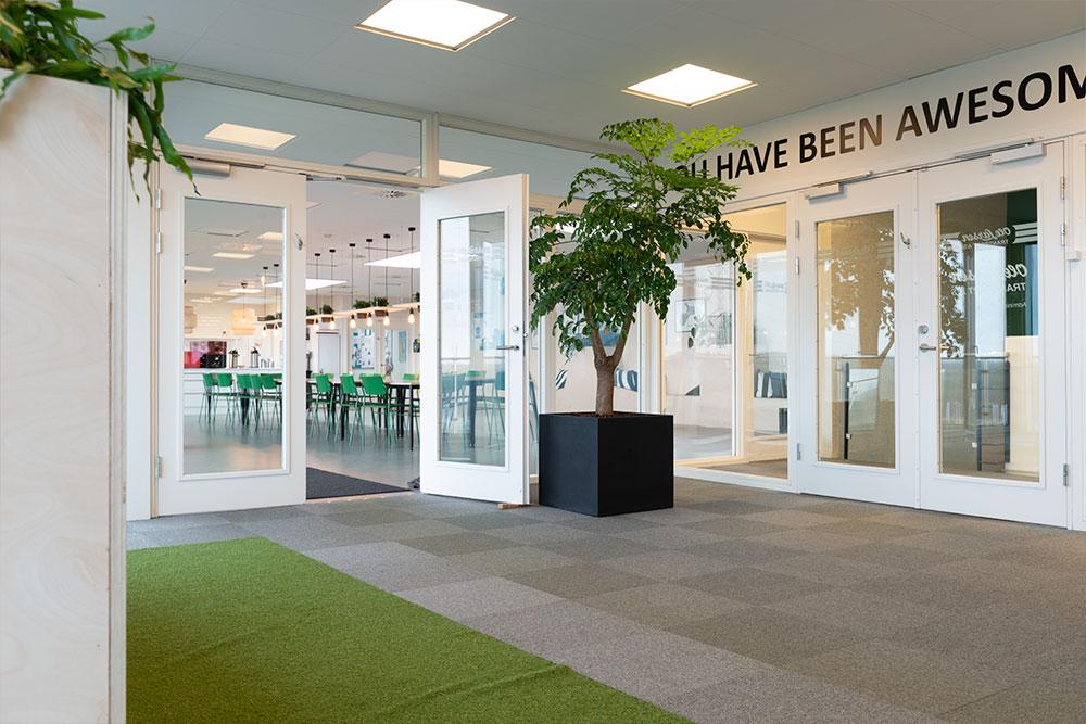 sort potte med grøn plante, indgang, Ole Larsen