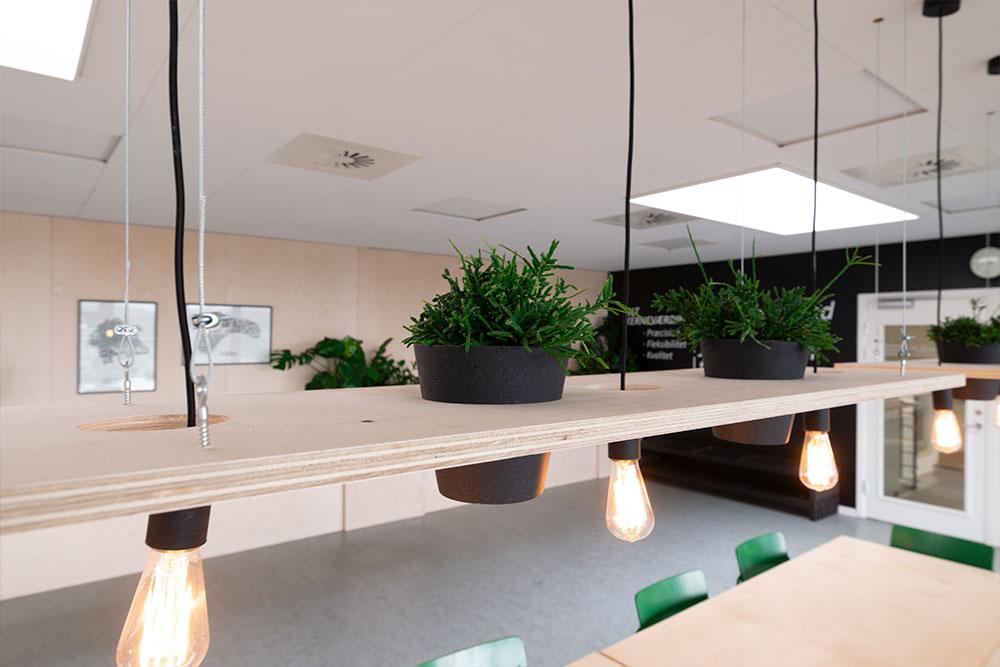 grønne planter i potter, lys, Ole Larsen