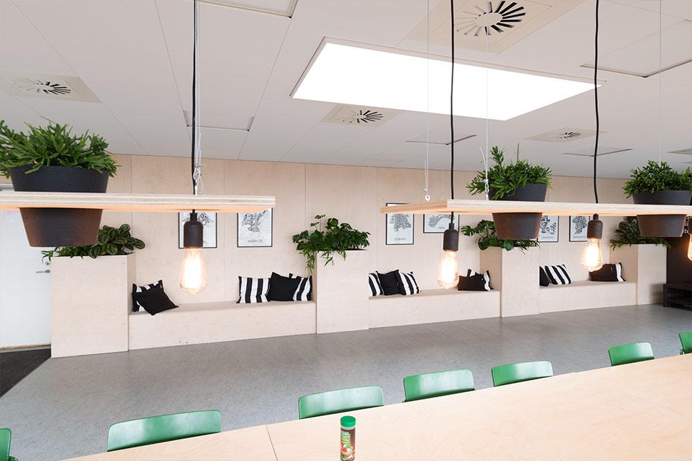 kreative belysning, planter, Ole Larsen