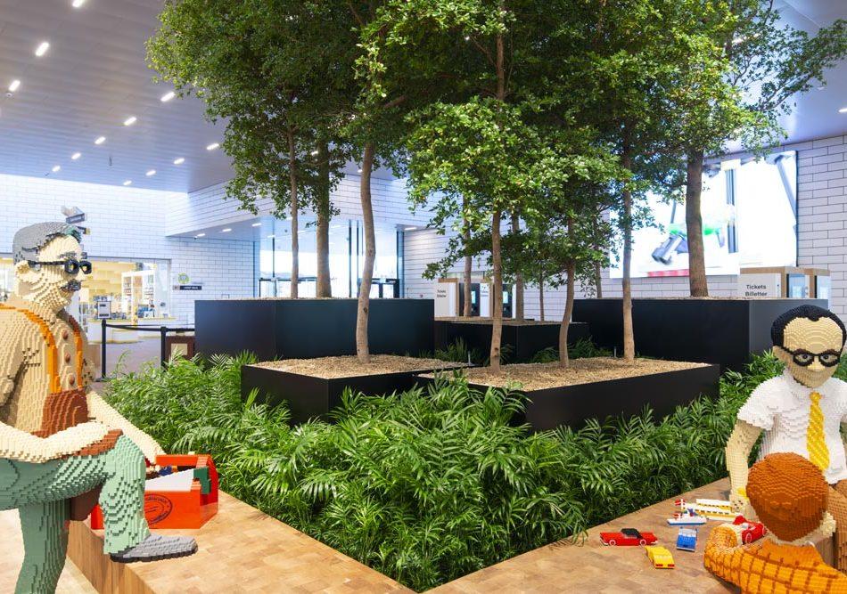 Indendørs træer, træer, store træer, træer til indretning, træ til erhvervplantebede, grønne planter,