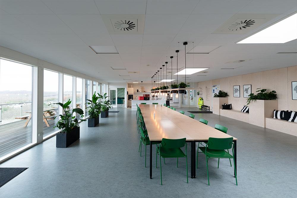 kantine indretning, grønne planter, Ole Larsen
