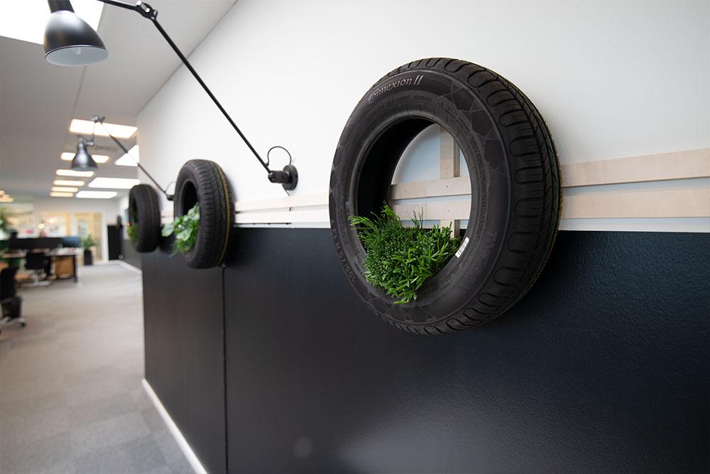 bildæk, planter, rhipsalis, Ole Larsen