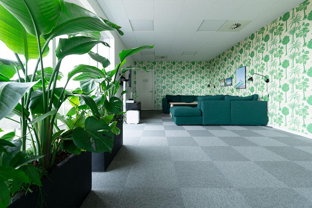 strelitzia, retro tapet, grøn indretning, Ole Larsen