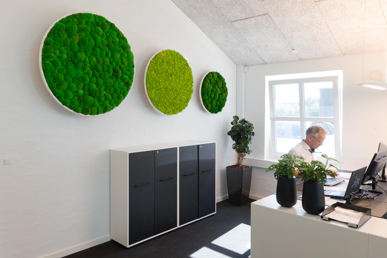 G-line, akustik løsning, mos, Kontor, fremtidens arbejdsplads
