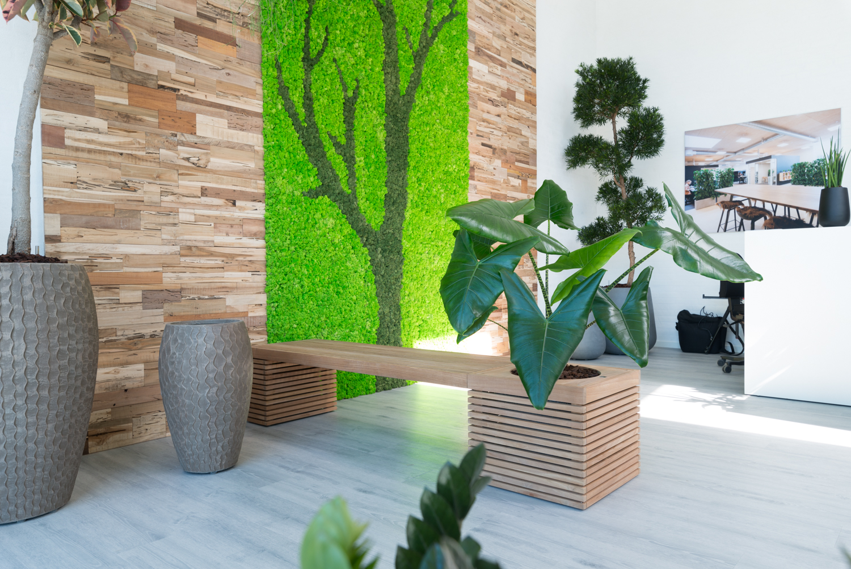 bænk med plante, mosvæg, teak wall,