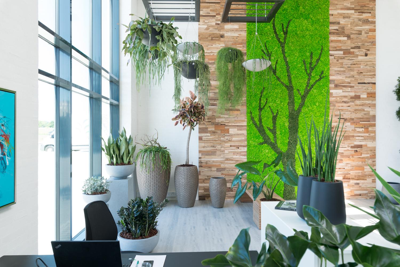 Fremtidens arbejdsplads, Showroom, planter, krukker, mosvæg,