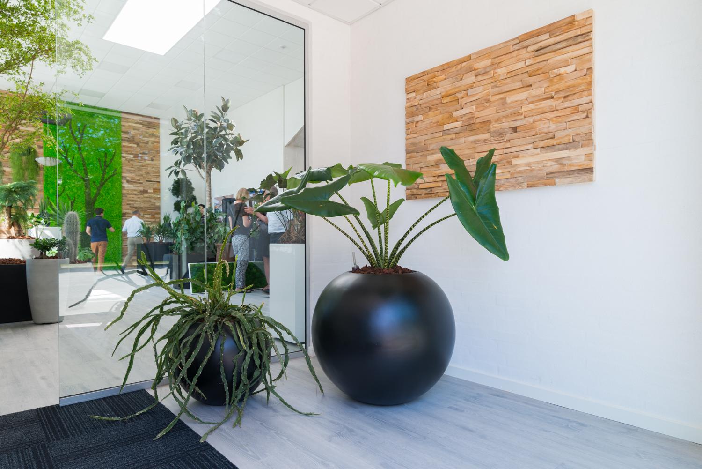 Fremtidens arbejdsplads, runde sorte krukker, Teak wall, planter,