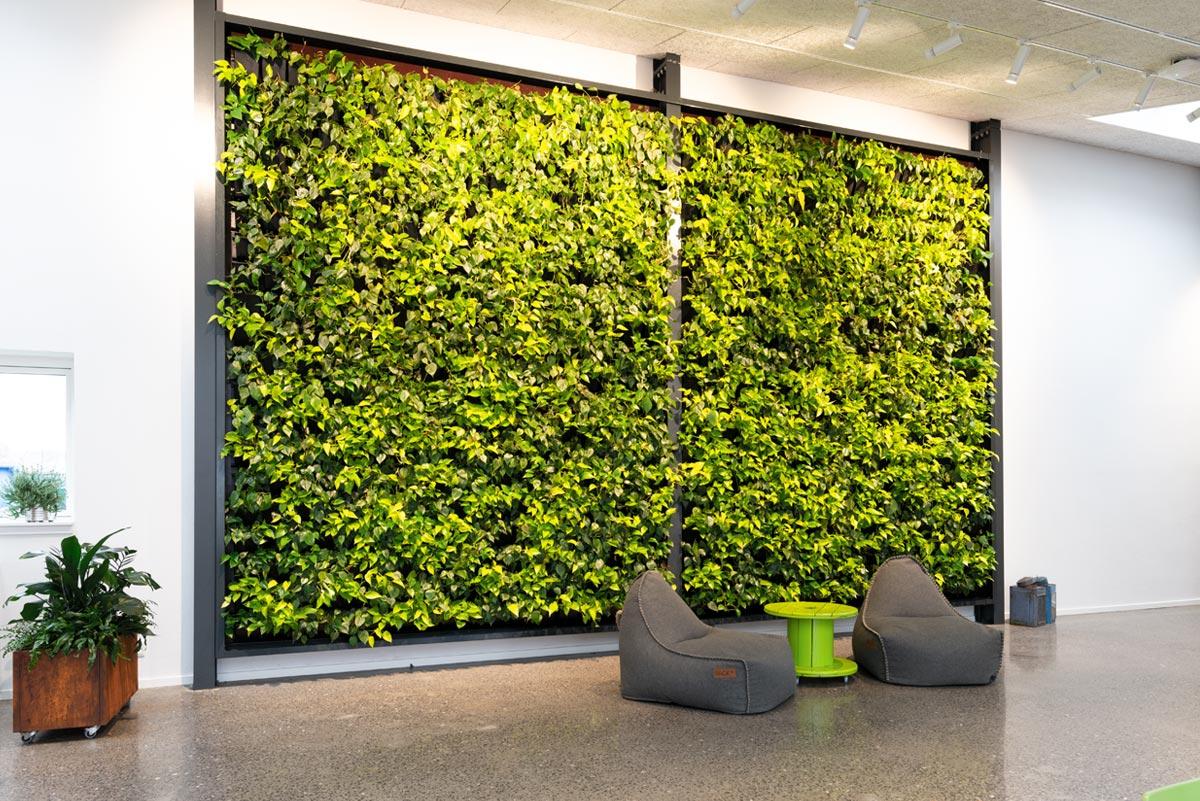 plantevæg, indretning,