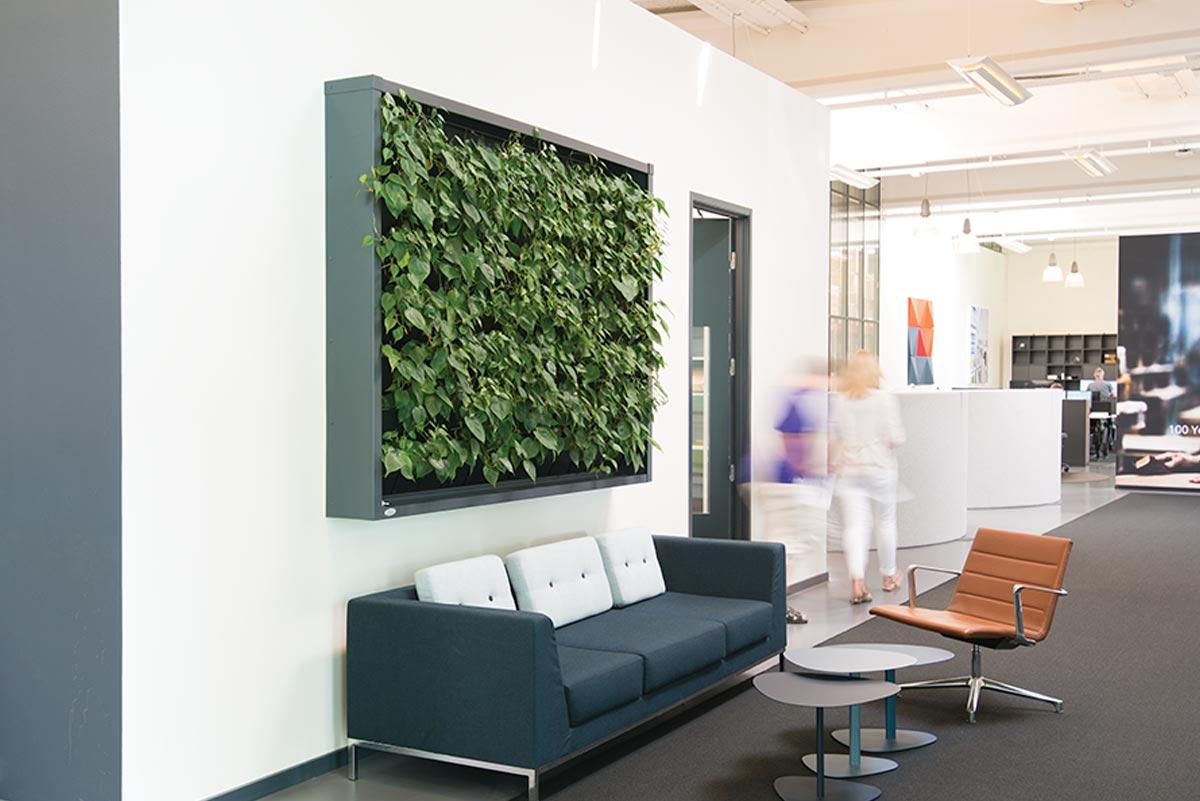 lille plantevæg, reception,