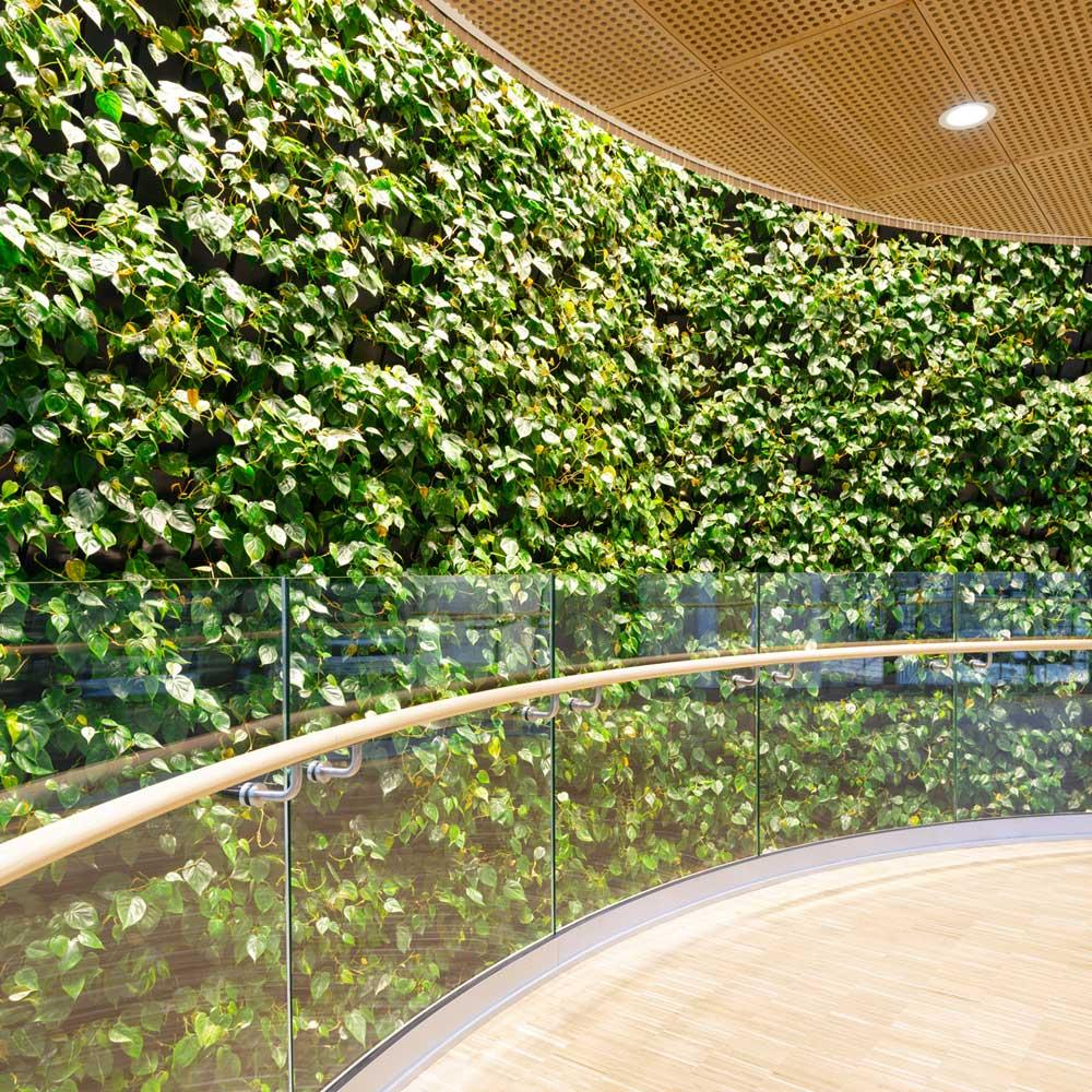 indendørs plantevæg,