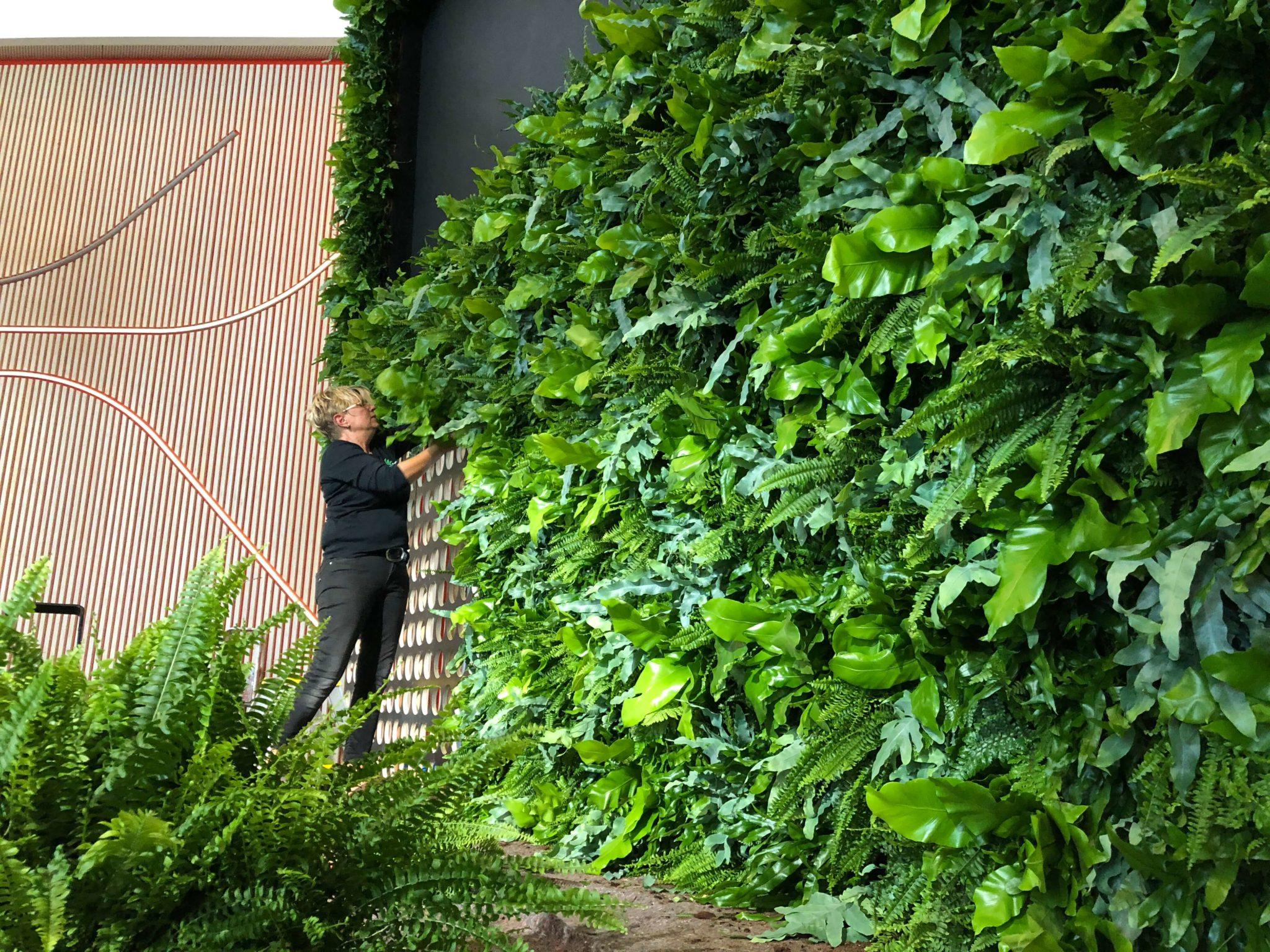 Obama på SDU, Obama i Kolding, plantevæg, Obama plantevæg, plantevæg SDU, Plantevæg SDU Kolding
