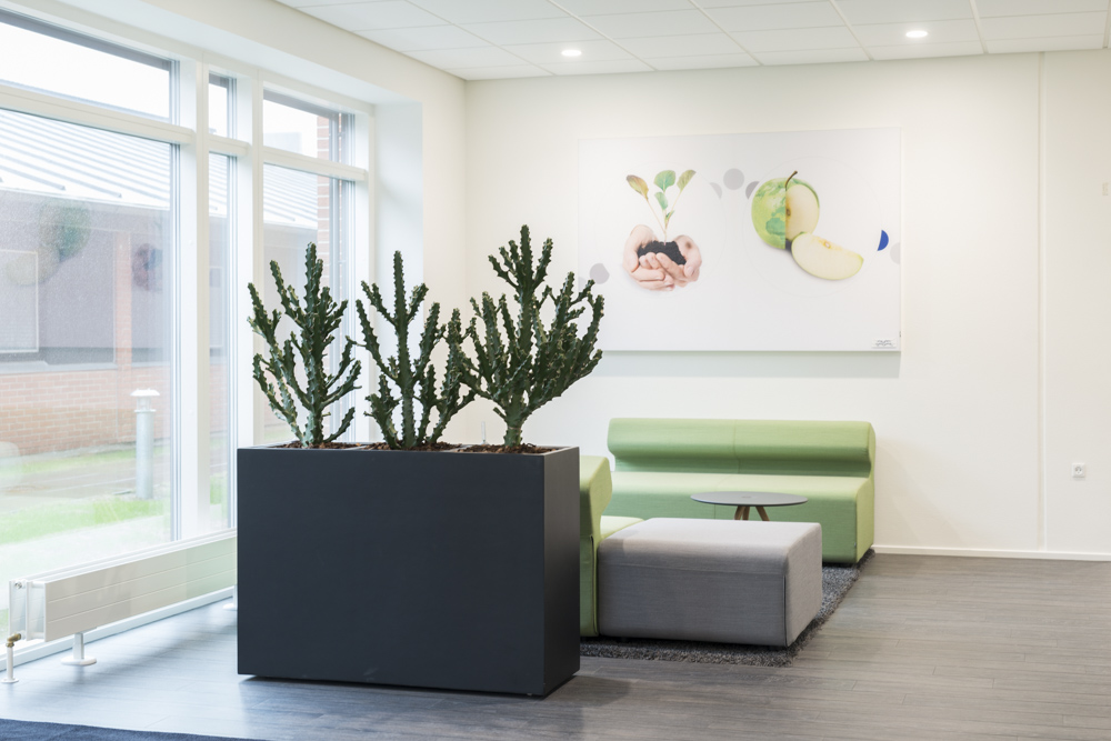 Alfa Laval, Kaktus, indretning,