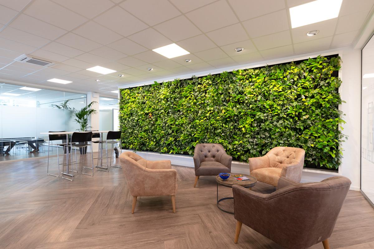 plantevæg, reception, planteindretning,