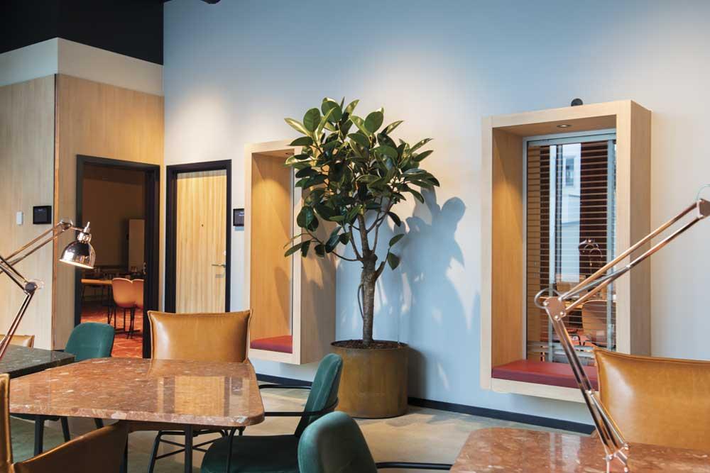Mødelokaler, Krukker i corten stål, stor grøn plante, Scandic kødbyen,