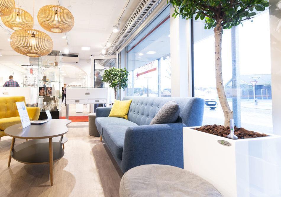 Planter, butik, Indretning,