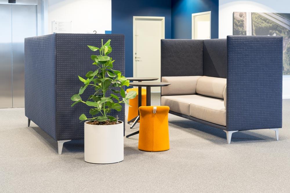 Grønne planter, møbler,