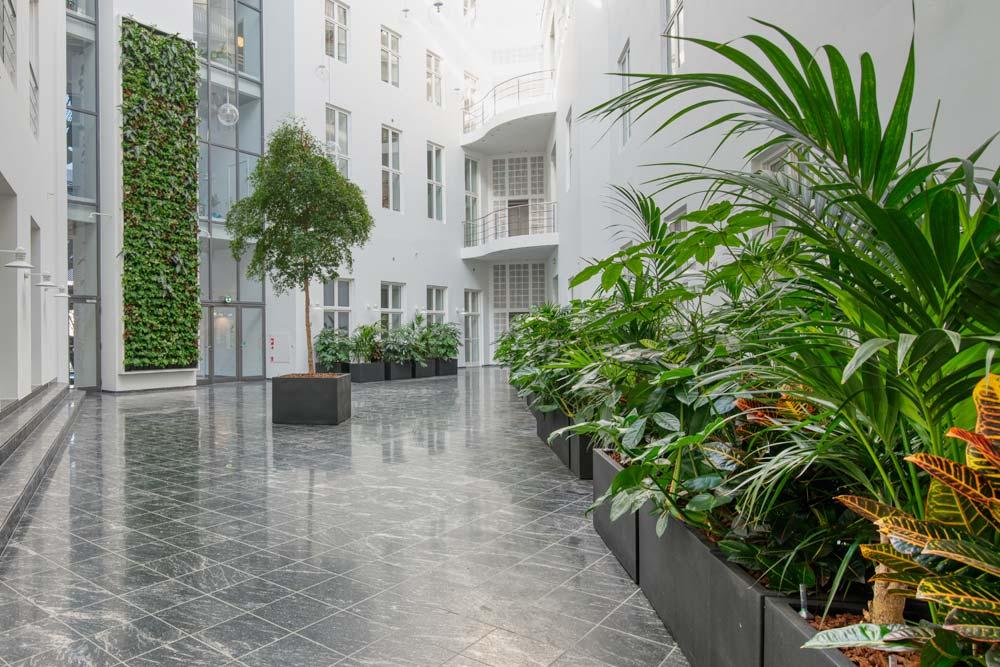 Planteservice på Fyn, Fyns Planteservice, Plantevæg, Planter, planteindretning, indendørs planter,