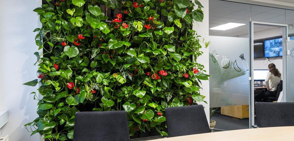 Plantevaeg, Mødelokale, blomstervæg,