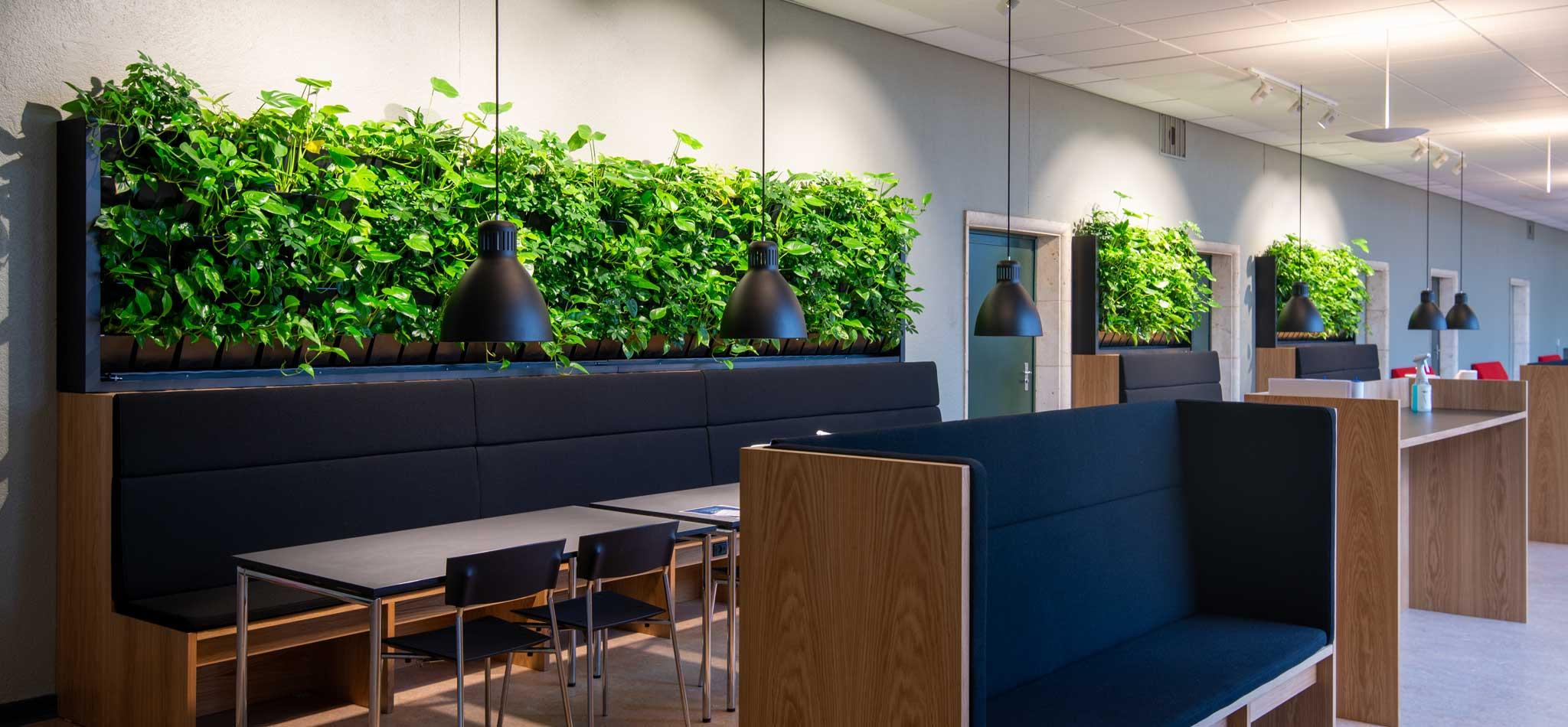 plantevægge, borde, stole, hyggeligt miljø,